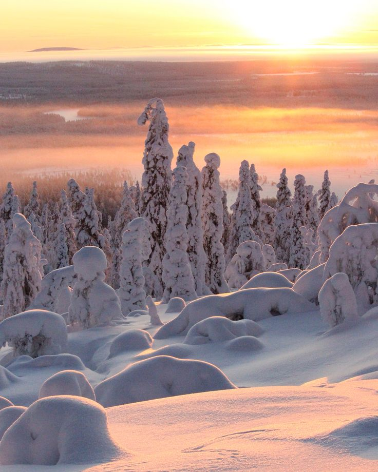 Landscape in Levi, Lapland, Kittilä Photo by @Vipula1