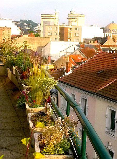 """jardin urbain-""""Les Jardins des Hurlevents """" http://www.plantes-vivaces-hurlevents.com/"""