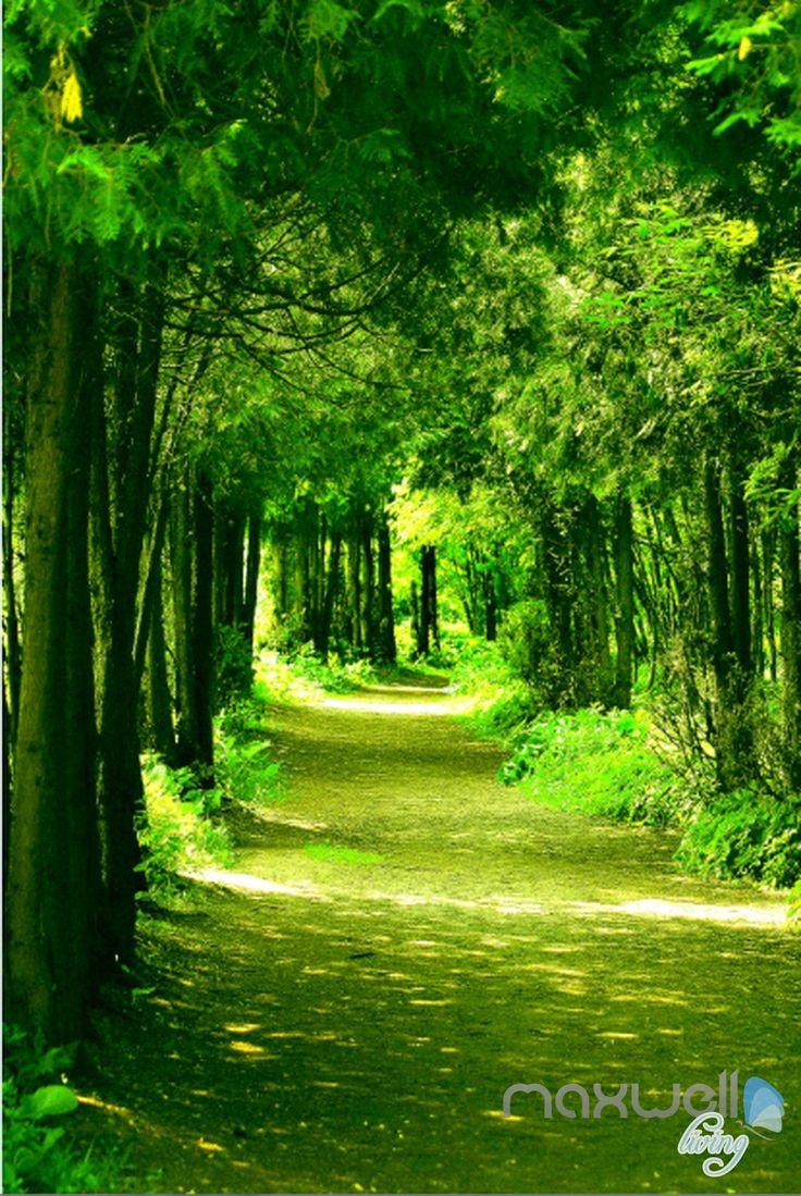 20 best forest scene wallpaper murals images on pinterest 3d green forest sunbeam corridor entrance wall mural decals art print wallpaper 060