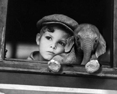 Un niño siempre puede enseñar tres cosas a un adulto: a ponerse contento sin motivo, a estar siempre ocupado en algo y a saber exigir con todas sus fuerzas aquello que desea.  Paolo Coelho