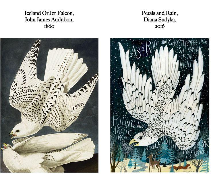 John James Audubon VS Diana Sudyka