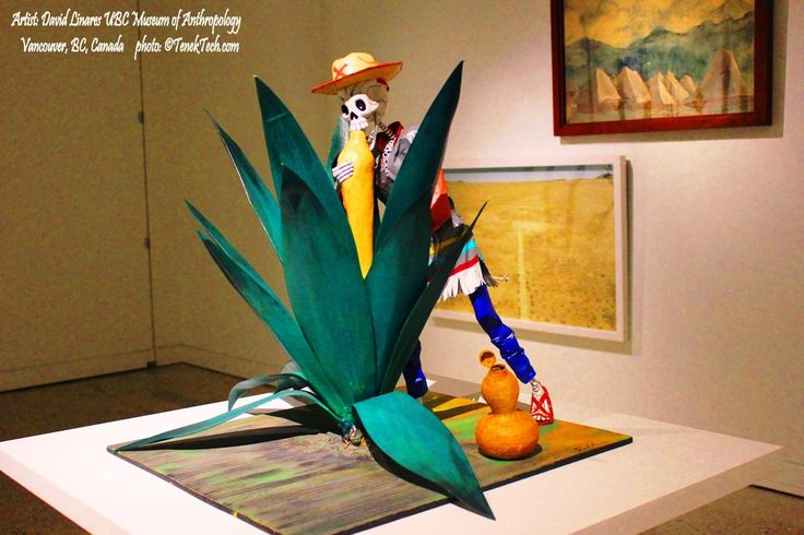 A 'tlachiquero' skeleton extracting aguamiel (maguey juice) from a maguey plant using an acocote (bule) papier-maché sculpture by David Linares [Mexico City, 1967] (Linares Family known internationally by their 'cartonería' [alebrijes, judas, calacas] sculptures ) UBC Museum of Anthropology  MOA The Marvellous Real