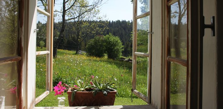 A gorgeous green view from Haidl-Madl Vacation Rental