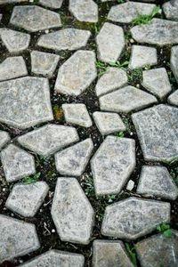 Molded Concrete Pavers - looks easy!