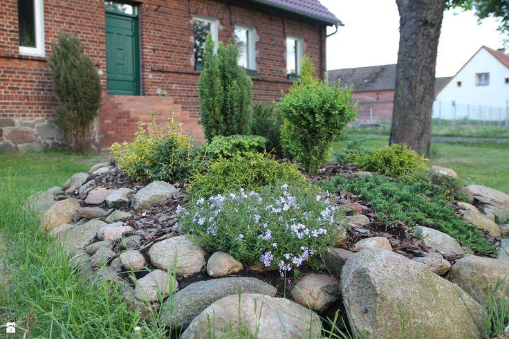 Skalniak. - zdjęcie od Agnieszka Kijowska - Ogród - Styl Tradycyjny - Agnieszka Kijowska, brick house, brick house, diy, green doors
