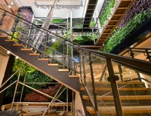 GSky Green Wall West Elm London