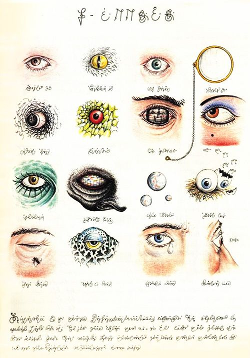 Codex Seraphinianus: History's Most Bizarre and Beautiful Encyclopedia, Brought Back to Life | Brain Pickings