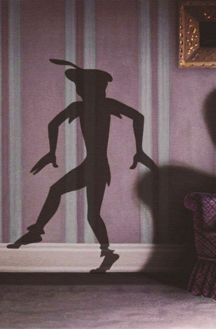 peter pan shadow. Cool idea for the playroom !