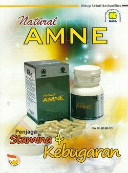 Natural AMNE merupakan produk yang memiliki kandungan asam amino esensial. Asam amino merupakan nutrisi yang memiliki peran penting bagi tubuh manusia. Asam amino merupakan unsur dasar penyusun protein dan memiliki berbagai macam fungsi, diantaranya sebagai bahan pembentukan enzim, hormon, antioksidan, neurotransmitter, serta jaringan lain dalam tubuh.