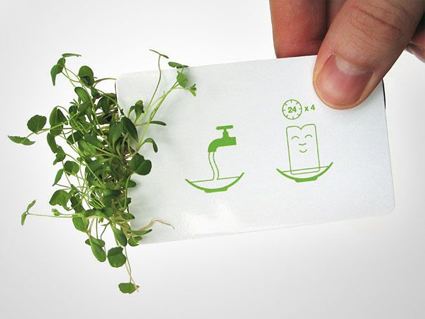 A business card that literally grows. What a fun and memorable idea!