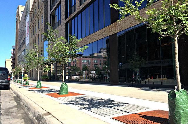 Trees prepared for planting with pervious pavers in front of Humboldt lofts