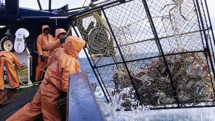 Deadliest Catch Season 11 Episode 17 S11E17 #tv #tvseries #tvshow #mustwatch