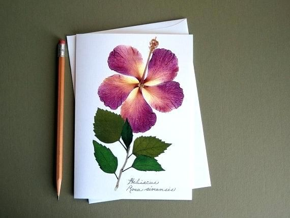 Greeting Cards With Dry Leaves And Flowers Pressed Flower Card Hibiscus Flower Cards Pressed Flowers Pressed Flower Art