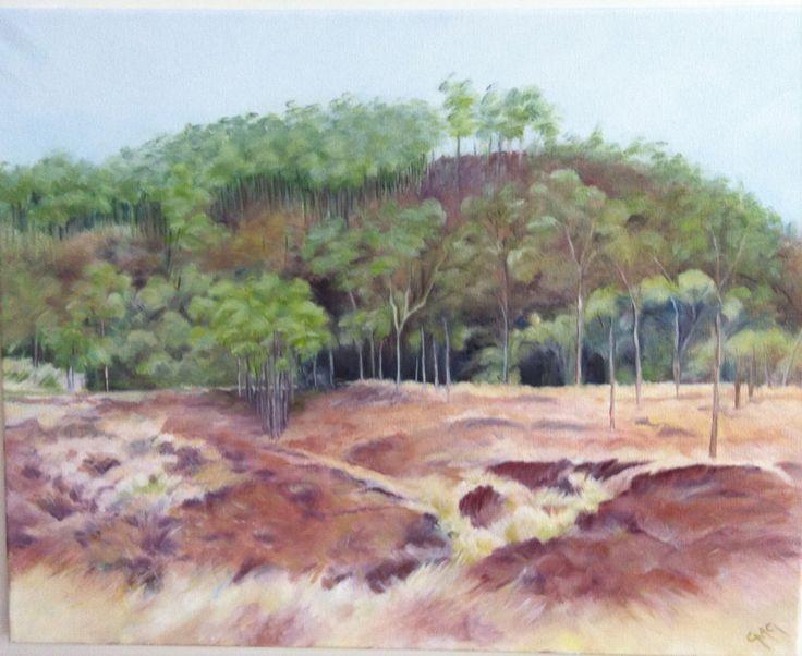 "Carnarvon NP Oil on canvas 20x16"""