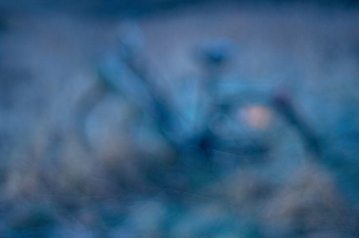 #vsco #vscocam #vscogram #instaphoto #picoftheday #instaday #vscofolk #igers #igersoslo #vscogang #bestofvsco #vscodaily #lifeofadventure #liveauthentic #livefolk #artsofvisual #visualsoflife #wanderfolk #peoplescreatives #visualarchitects #justgoshoot #letsgosomewhere #exploreeverything  #neverstopexploring #visualsgang #explore #adventure #socalty #bicycle