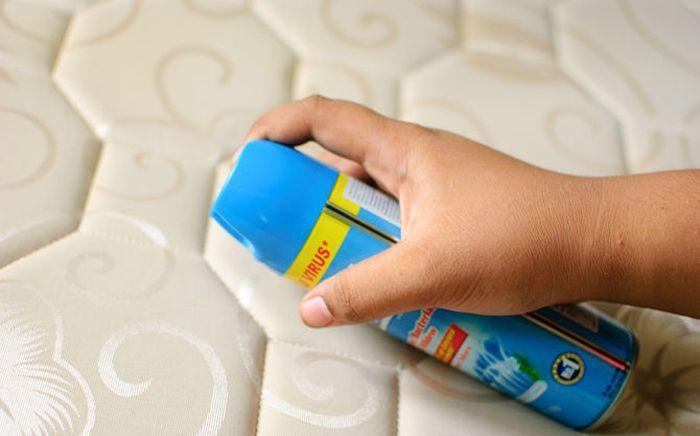 Как просто удалить пятна плесени с мебели - http://mebelnews.com/chistka-mebeli/kak-prosto-udalit-pyatna-pleseni-s-mebeli.html