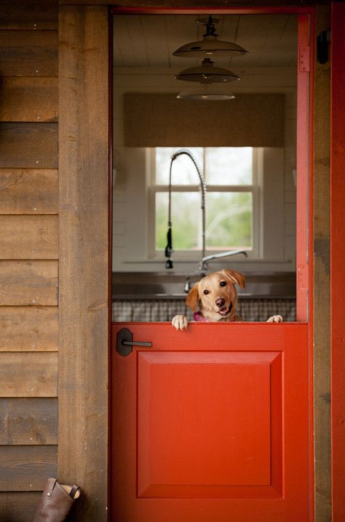 17 Best Images About Dutch Doors On Pinterest Stables