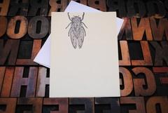 letterpress/screenprint cicada card  Appalachia Press