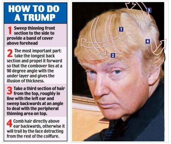 Donald Trump Hair on Pinterest | Hair Jokes, Donald Trump Bald and ...