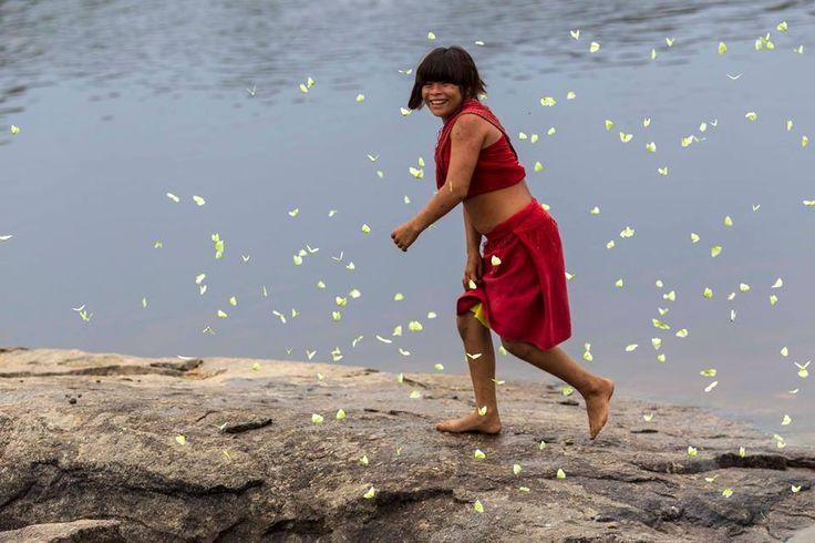 ragazza india Araweté, (passaggio di età) foto di Alice kohler