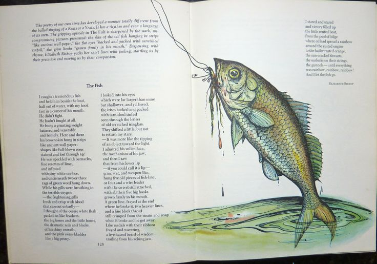 fish elizabeth bishop essays Name instructor course date the fish by elizabeth bishop bishop's use of personification in the poem can be said to be an essential part of its development be.
