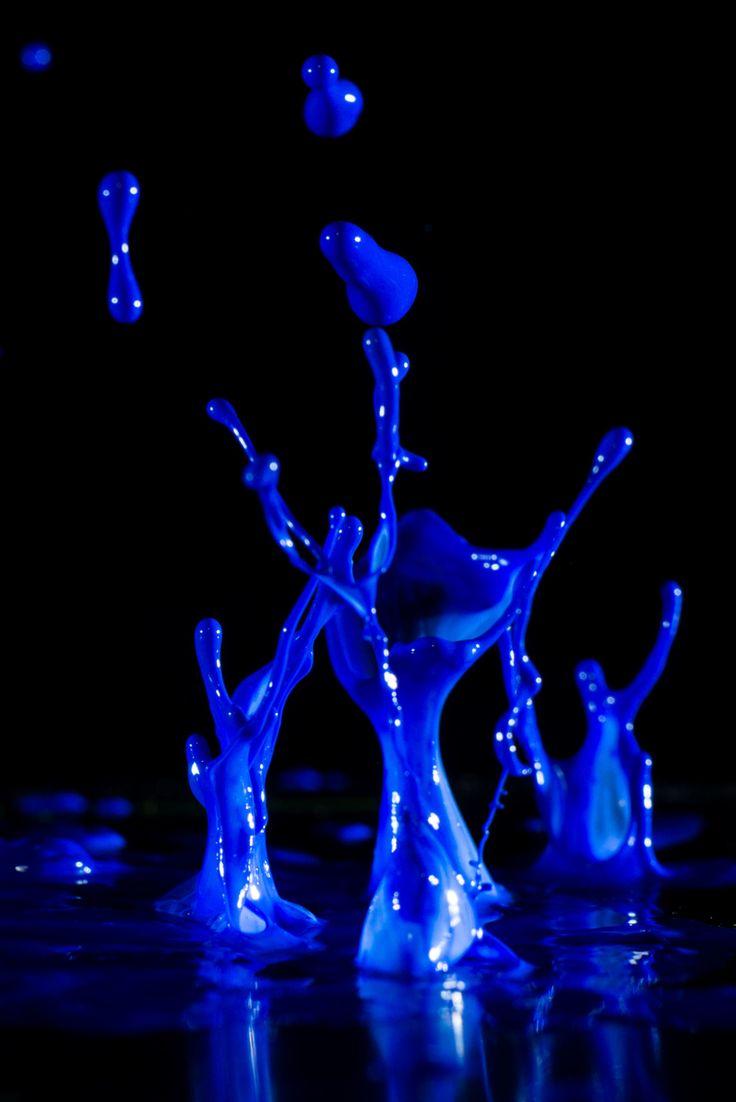 def putn this art on my walls -love Splash of blue