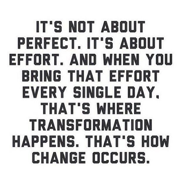 No One Is Perfect But Everyone Can Give 100 Not Just In Fitness But In Everything They Do To Succe Best Positive Quotes Positive Quotes Workout Quotes Funny