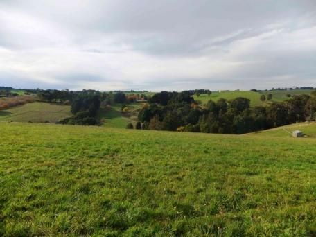 115 Settlement Road Neerim Vic 3831 - Residential Land for Sale #200657043 - realestate.com.au