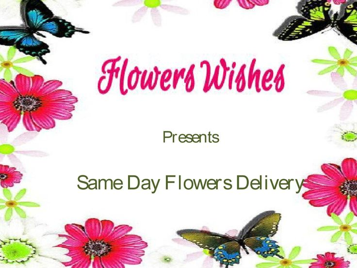 Same day flowers delivery  Flowerswishes.com offers same day flowers delivery with include flowers with cakes, chocolates, fruits, dry fruits and more.  Please visit the website - http://www.flowerswishes.com/same-day-flowers-delivery-1206.html