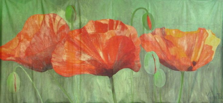 poppies 3 x 1,5 meters