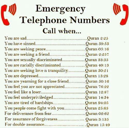 Islamic Emergency Telephone Numbers XD