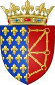 Philippe V de France, il est le 2° fils de Philippe IV le Bel et de Jeanne 1° de Navarre. Son père lui donne en apanage le comté de Poitiers et le marie à Jeanne de Bourgogne. Cette union peut l'amener à briguer la dignité impériale. Prince rusé, Philippe va mettre toute son énergie à assurer l'avenir de sa descendance.