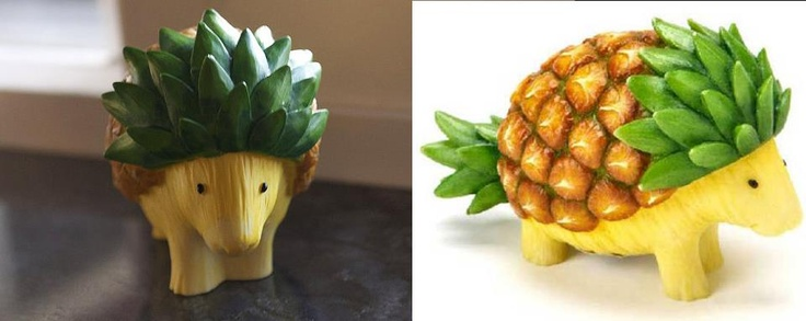 HEDGEHOG PINEAPPLE Going for cuteness overload today! :) This is one that kids all ages will love! Would you try to make this hedgehog sculpture out of a pineapple in your kitchen? I think I will! Kristina Carrillo-Bucaram — with Julia Coggan.