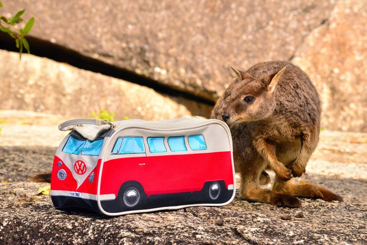 VW Campervan wash bag, checked out by the locals.