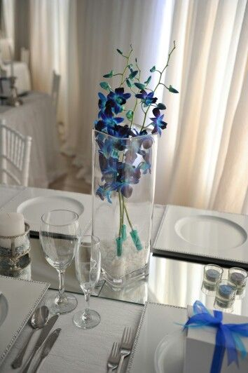 Blue and purple orchid
