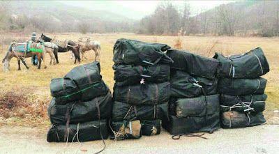 Ιωάννινα: Κουβάλησαν με άλογα 569 κιλά ινδική κάνναβη!
