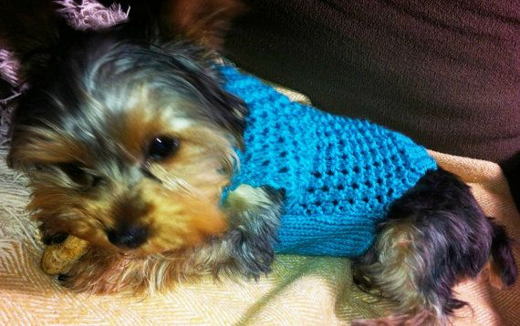 Dog clothes beautiful blue lacy design sweater pet por CUTIEDOG, £12.50