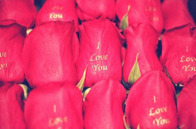 New Way To Give Luxury Roses!  #Luxury #Roses #Valentines #Gift #Love #Happy #Friendship #Toronto #Canada #UniqueRosesCA
