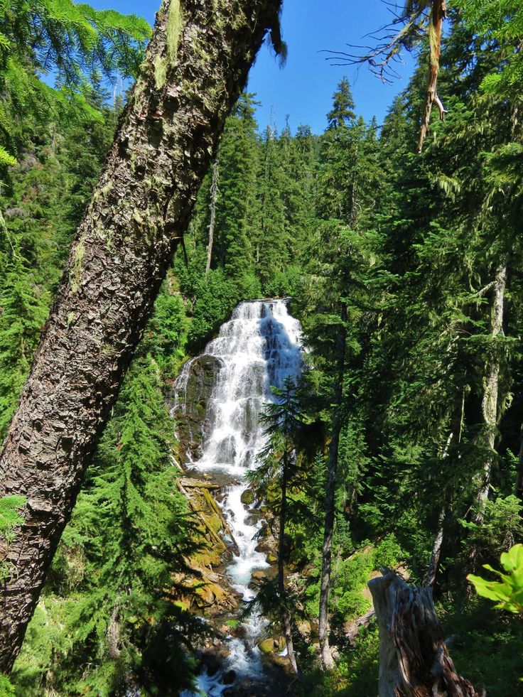 Duncan Falls in Three Sisters Wilderness, Oregon