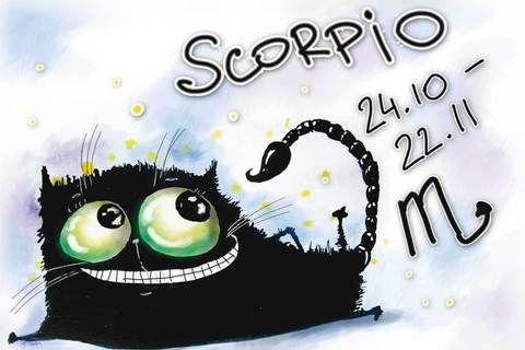 292 Знаки зодиака. Скорпион