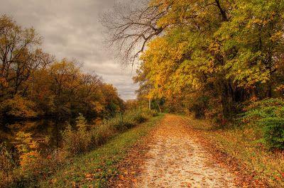 Las mejores fotos de paisajes naturales I (16 imágenes) | Banco de Imágenes Gratis .COM (shared via SlingPic)