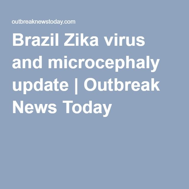 Brazil Zika virus and microcephaly update   Outbreak News Today