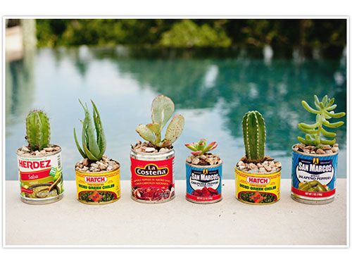 Fill old Mexican food cans with succulents and cacti to create a charming centerpiece/party favor