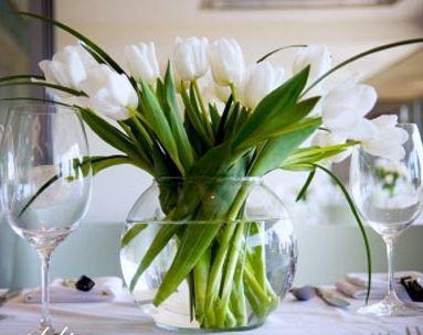 Hirethingsconz Asset Show Tulip CenterpiecesCenterpiece IdeasDining Table