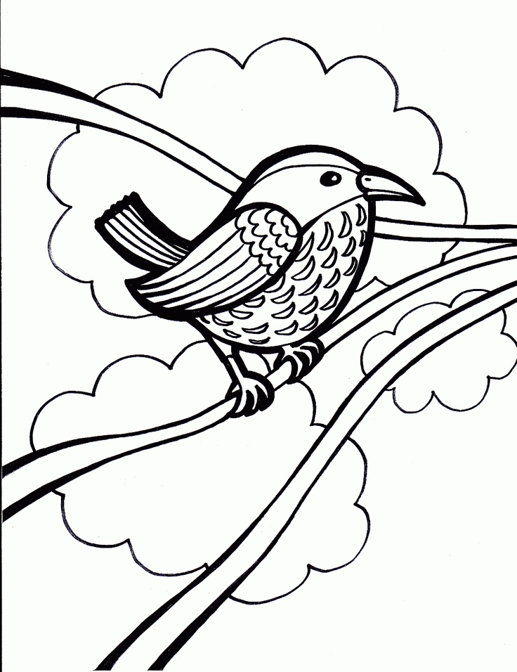 116 Best Coloring Pages Images On Pinterest