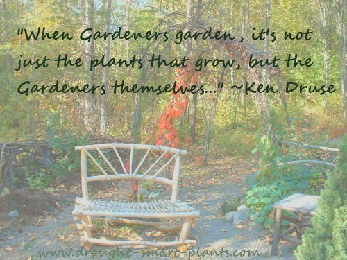 Garden Quotes - funny, punny, witty and whimsical