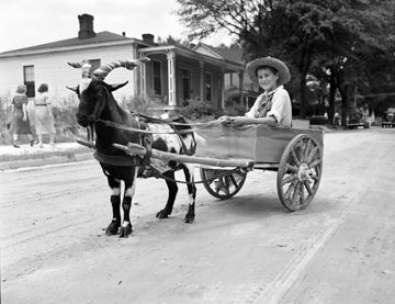 Wilson Farm Festival, Wilson, NC, August 1938, Goat Wagon, photo taken by Baker. Conservation and Development Department, Travel and Tourism Division Photo Files, North Carolina State Archives
