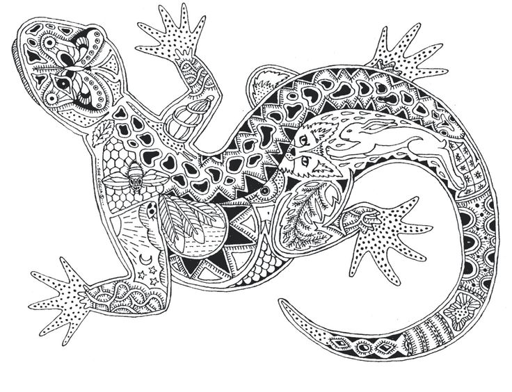 Even A Gecko