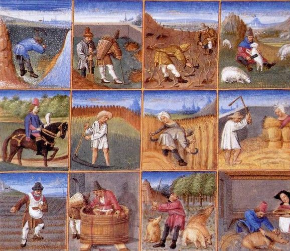A Year on the Medieval Farm   #medieval