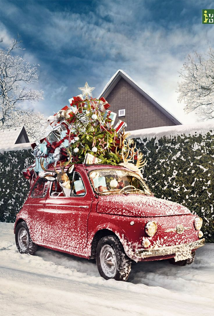 27 best images about Christmas Car Decorations on ...
